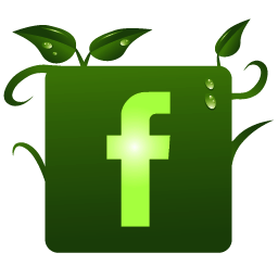 Image result for facebook logo nature